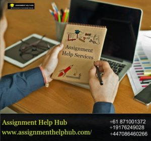 Assignment Help Hub for University Assignment Help